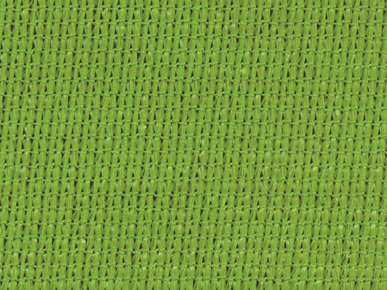Zesty-Lime-1